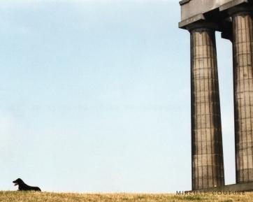 edinburgh memorial dog relax