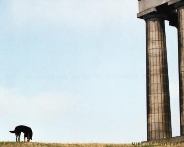 edinburgh memorial dog stand